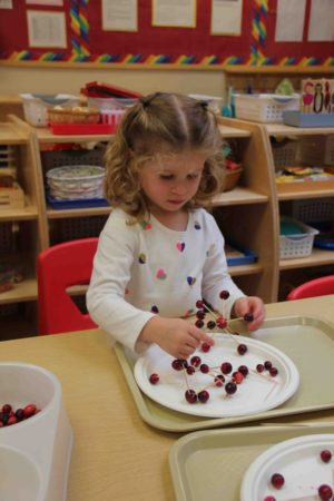 cranberry-sculptures-enrichment