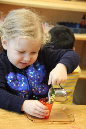 Primary Montessori Classes - Preschool / Kindergarten