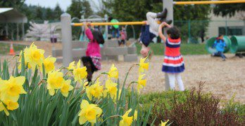 Why Outside Playtime is Critical to Development